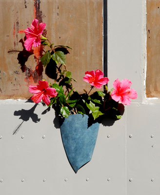 New flower sconce with hibiscus